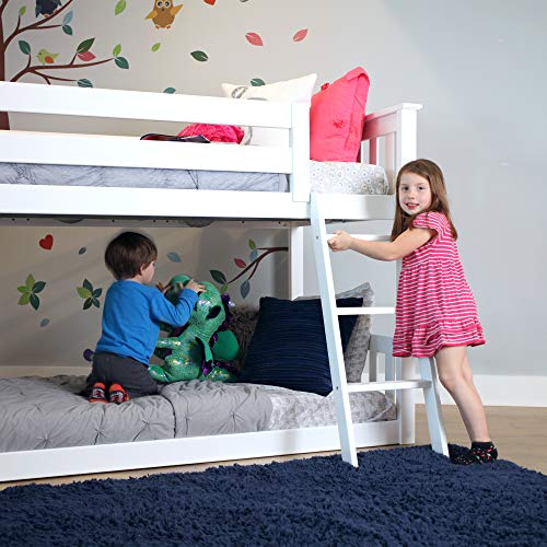 Best image of bunk beds