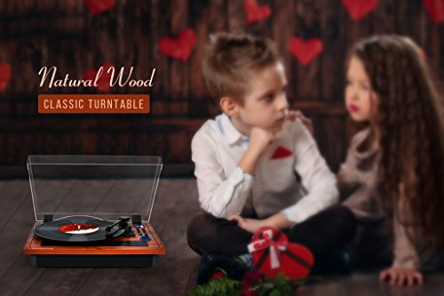 Best image of usb turntables